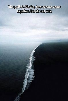Real Photo But Hoax: Incorrectly described as the meeting of two oceans in the Gulf of Alaska, probably because it bears some resemblance to these also wrongly captioned pictures, this photo actually shows the beach at Dyrhólaey, Iceland. Oh The Places You'll Go, Cool Places To Visit, Places To Travel, Gulf Of Alaska, Alaska Usa, All Nature, Amazing Nature, To Infinity And Beyond, Adventure Is Out There