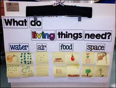 living and nonliving anchor chart parts {part of a living and nonliving unit for kindergarten} includes chart parts, song, sorting activities, mini-posters and printables kindergarten Living & Nonliving Fun! 1st Grade Science, Kindergarten Science, Elementary Science, Teaching Science, Science Education, Science Activities, Sorting Activities, Science Ideas, Kindergarten Themes