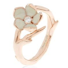 Single Cherry blossom ring, Shaun Leane at Harrods Unconventional Engagement Rings, Gold Engagement Rings, Wedding Rings, Oval Engagement, Wedding Band, Cherry Blossom Jewelry, Or Rose, Rose Gold, Rose Jewelry