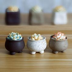 Earthen Planter Set - Turtle Leaf Round or square shaped earth colored ceramic pot sets for your succulents, cacti, or small plants. Material: Ceramic Size: x x Pottery Wheel, Slab Pottery, Ceramic Pottery, Pottery Art, Thrown Pottery, Pottery Painting, Hand Built Pottery, Ceramic Planters, Ceramic Clay