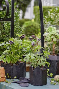 Besoin de cache-pots pour accueillir vos plantes d'intérieur ou d'extérieur ? Découvrez notre tuto facile pour créer des cache-pots récup avec des morceaux d'ardoise ! Diy Jardin, Diy Décoration, Pots, Floral, Gardens, Slate, Garden Landscaping, Flowers, Flower