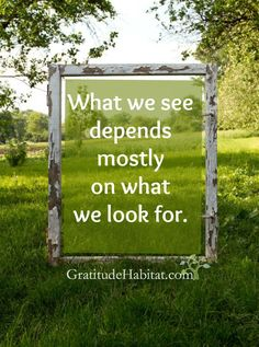 Intention and perspective create what we see. Visit us at: www.GratitudeHabitat.com #perspective #whatwesee #GratitudeHabitat