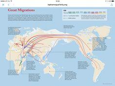 Migratiebewegingen