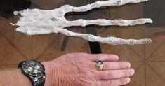 Menos de dois meses após a revelação da descoberta no Peru de umpequeno crânio humanoide, vem outra estranha descoberta que está menos para humanoide e mais para alienígena. A mão tem somente três dedos – nenhum polegar – e conta com estranhas características que a torna difícil de ser identificada. Como o pequeno crânio, revelado em novembro, os detalhes da mão anômala são poucos. O siteHidden Inca Tours tem alguma informação, alegando que a mão foi trazida a eles pela mesma pessoa em…