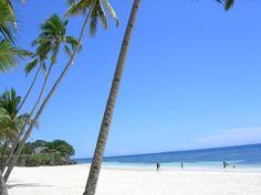 Panglao Beach Bohol, Philippines Bohol: Panglao Beach. Photo © 2005 Omar Olarte. All rights reserved.