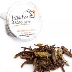 Mix apéro d'insectes de chez Multivores.com / Insectes à croquer - Edible
