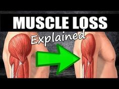 How To Build Muscle Mass After Weight Loss : How Long Does It Take To LOSE Muscle After A Layoff?