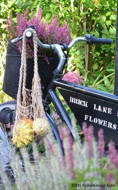 Blooming bicycle