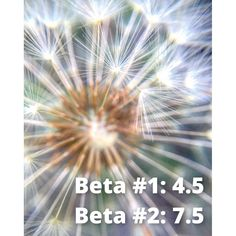 IVF Beta levels. Wanting to believe when everything is pointing to a failed IVF cycle. IVF Blog from genetic carriers. IVF w/PGD