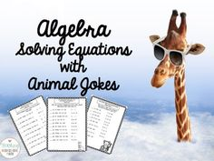 Fun Algebra Solving Equations Practice - with Animal Jokes!