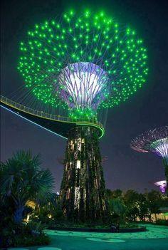 Singapur grün