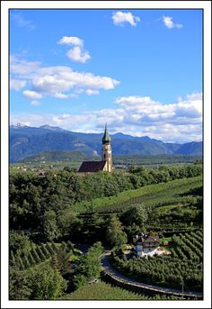 On the wine road, Appiano, Italy