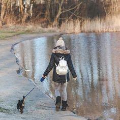 Quantas vezes devo passear com o cachorro. Muitas pessoas têm dúvidas acerca de…