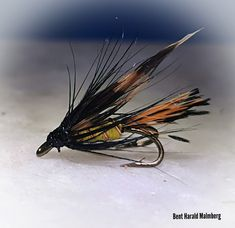Trout flies z14 Trout, Feather, Quill, Brown Trout, Feathers