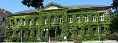 Spittal an der Drau Austria, Arch, Outdoor Structures, Garden, Longbow, Garten, Lawn And Garden, Gardens, Wedding Arches
