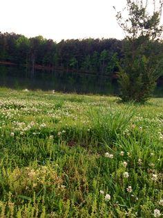 Lost Mountain Lake, Powder Springs, GA 050314