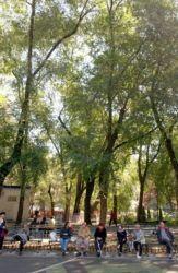 Play, run, and hang at Seward Park