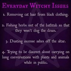 TLOL this is so true! There is no outfit complete without cat hair. Celtic, Wiccan Crafts, Eclectic Witch, Pagan Witch, Witches, Cat Hair, Kitchen Witch, Divine Feminine, Book Of Shadows