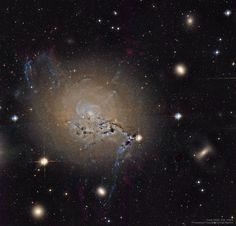 Filamentos de 20.000 años luz de largo parecen surgir del centro de la galaxia NGC 1275, en el cúmulo de Perseo. La foto es del Hubble. 