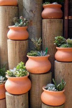 DIY succulent planters.