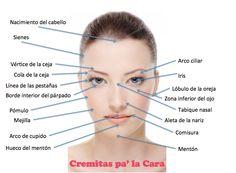 Nombres de partes de la cara - Imagui Makeup Tips, Hair Makeup, Make Up Tricks, Makeup Brushes, Aesthetic Wallpapers, Photo Art, Bobby Pins, Anatomy, Salons