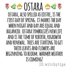 Ostara, the next sabbat on our Wheel of the Year, is March 20th this year! Wiccan Sabbats, Wicca Witchcraft, Eclectic Witch, Vernal Equinox, Modern Witch, Practical Magic, Beltane, Book Of Shadows, March 20th