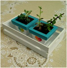 Macetas de madera y cajón... regalo que le hice a mi mamá :)