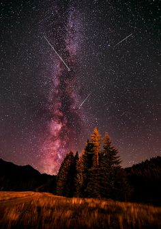 Perseid Meteor Shower by crazyaboutnature crystal mountain galaxy light long exposure meteor milky way night night photography nightscape pers Night Photography, Landscape Photography, Nature Photography, Photography Backgrounds, Cosmos, Perseid Meteor Shower, Crystal Mountain, Sky Full Of Stars, Donia
