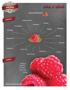 Aromas of wine: Raspberry Wine Paring, Wine Chart, Chateauneuf Du Pape, Make Your Own Wine, Wine Guide, Types Of Wine, Grape Juice, In Vino Veritas, Wine Cheese
