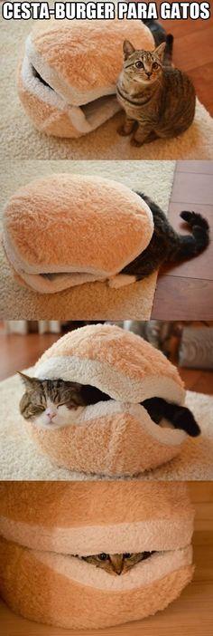 La mejor cesta-cama para gatitos.
