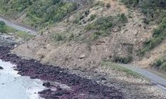 Railway tracks of the main trunk railway line are displaced by a massive landslide on the coastline north of Kaikoura. Earthquake Damage, Earthquake And Tsunami, New Zealand Earthquake, Wild Weather, Tornados, Severe Weather, Live In The Now, Picture Show, Country Roads