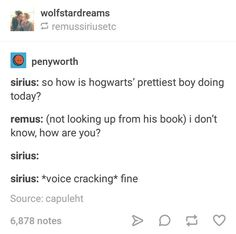 I mean this could be thr two of them flirting with each other, but Remus could also think Sirius was talking about himself because he knows he's fucking handsome