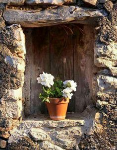 flowers on the sill via lindasinklings abriendo-puertas Old Windows, Windows And Doors, Garden Windows, Window View, Through The Window, Old Doors, Window Boxes, Flower Boxes, Beautiful Flowers