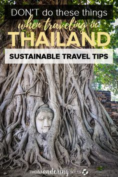 Don't Do These Things When Traveling in Thailand: Please Follow these Sustainable Travel Tips when visiting Thailand. Tourism can have a negative influence on a society and environment and we have to do our part to preserve the culture and planet when we travel. #Thailand #Sustainable #travel #responsible
