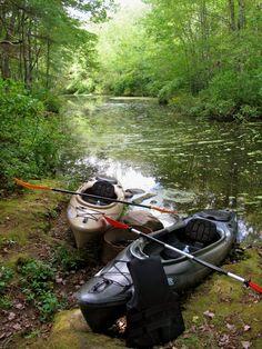 Go Kayaking.  Photo by Sharon Lefebvre