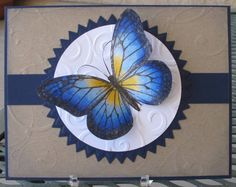 Blue Butterfly using Stampin Up Wonderful Wings