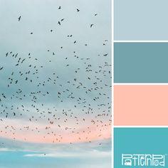 blue + pink seashore sunrise palette
