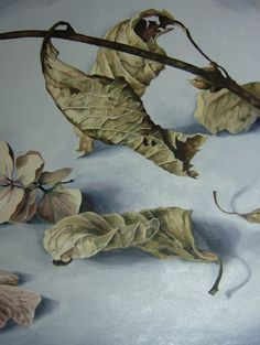 Hydrangea IX by AlisonHill on DeviantArt Pencil Art, Pencil Drawings, Still Life Drawing, Hydrangea, Colored Pencils, Feathers, Oil On Canvas, Markers, Leaves