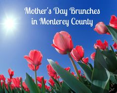 Best Mother's Day Brunches in #Monterey County 2015. #InspiredMeetings #WhyHB