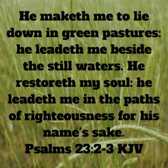 Psalms He maketh me to lie down in green pastures: he leadeth me beside the still waters. He restoreth my soul: he leadeth me in the paths of righteousness for his name's sake. Wonderful Things, Nice Things, Faith Quotes, Bible Quotes, Scriptures, Bible Verses, He Leadeth Me, Treasures In Heaven, King James Bible