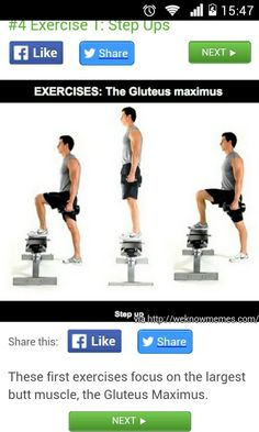 6bea2771 7 Best Fit images   Exercise workouts, Crunches, Fitness exercises
