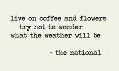 The National | Conversation 16 #theNational #conversation16 #lyrics #songlyrics #music