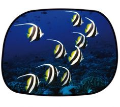 Sonnenschutz Seitenfenster selbsthaftend 45 x 34 cm - Motiv Fisch Malta, Butterfly, Tableware, Solar Shades, Pisces, Windows, Malt Beer, Dinnerware, Tablewares