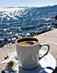 Online store to the best collections of whitty, funny Coffee cups and mugs, must have coffee accessories, gadgets and items. I Love Coffee, Best Coffee, My Coffee, Good Morning Coffee, Coffee Break, Coffee Cafe, Coffee Humor, Funny Coffee Cups, Coffee Accessories
