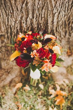 Beautiful Fall Bouquet by Sara Byrne Photography Fall colors with some white accents