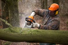 STIHL is a major brand that sells outdoor handheld power equipment, whether trimmers, blowers or chainsaws. Best Chainsaw, Stihl Chainsaw, Chainsaw Reviews, Tree Removal Service, Chainsaws For Sale, Stump Removal, Landscaping Software, Landscaping Ideas, Tree Stump