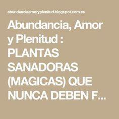 Abundancia, Amor y Plenitud : PLANTAS SANADORAS (MAGICAS) QUE NUNCA DEBEN FALTAR EN TU HOGAR O EMPRESA
