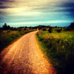"""summer time"" from @baralinda taken on piictu.com"