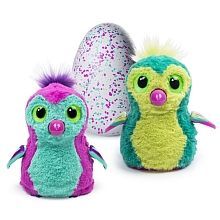 """Accidentally got one of these, didnt even ask for one, feel bad for all the kids that wanted one ... :( Hatchimals Pengualas - Styles May Vary - Spin Master - Toys""""R""""Us"""