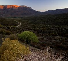 Horse Riding, Mountain Biking, Perfect Place, Wilderness, South Africa, Hiking, Horses, Mountains, Places